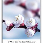 Cover of When God Has Been Called Away to Greater Things by Grace Wells